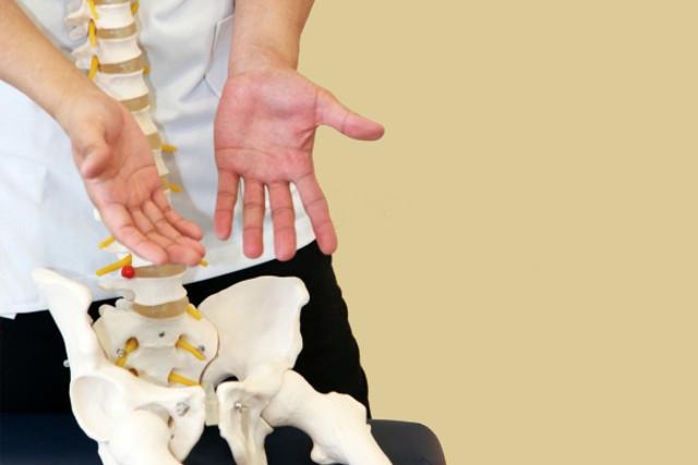 骨盤のズレが与える影響